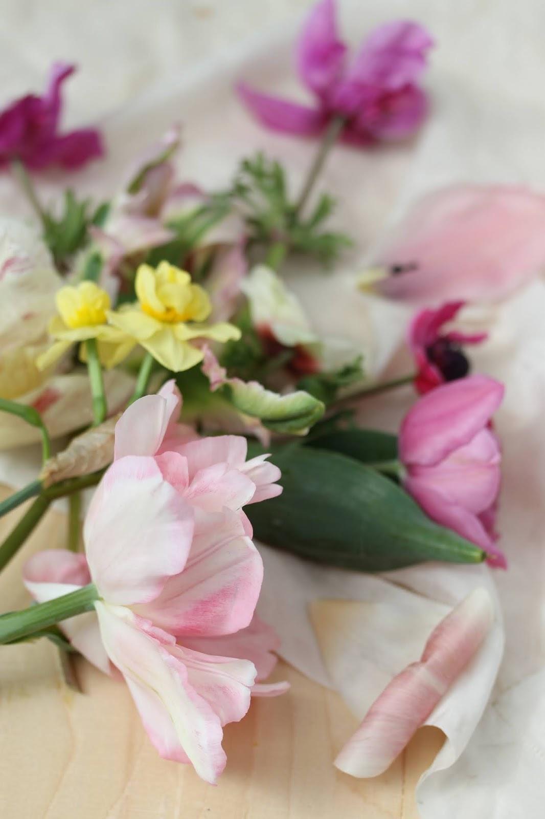 Macro_flowers_2