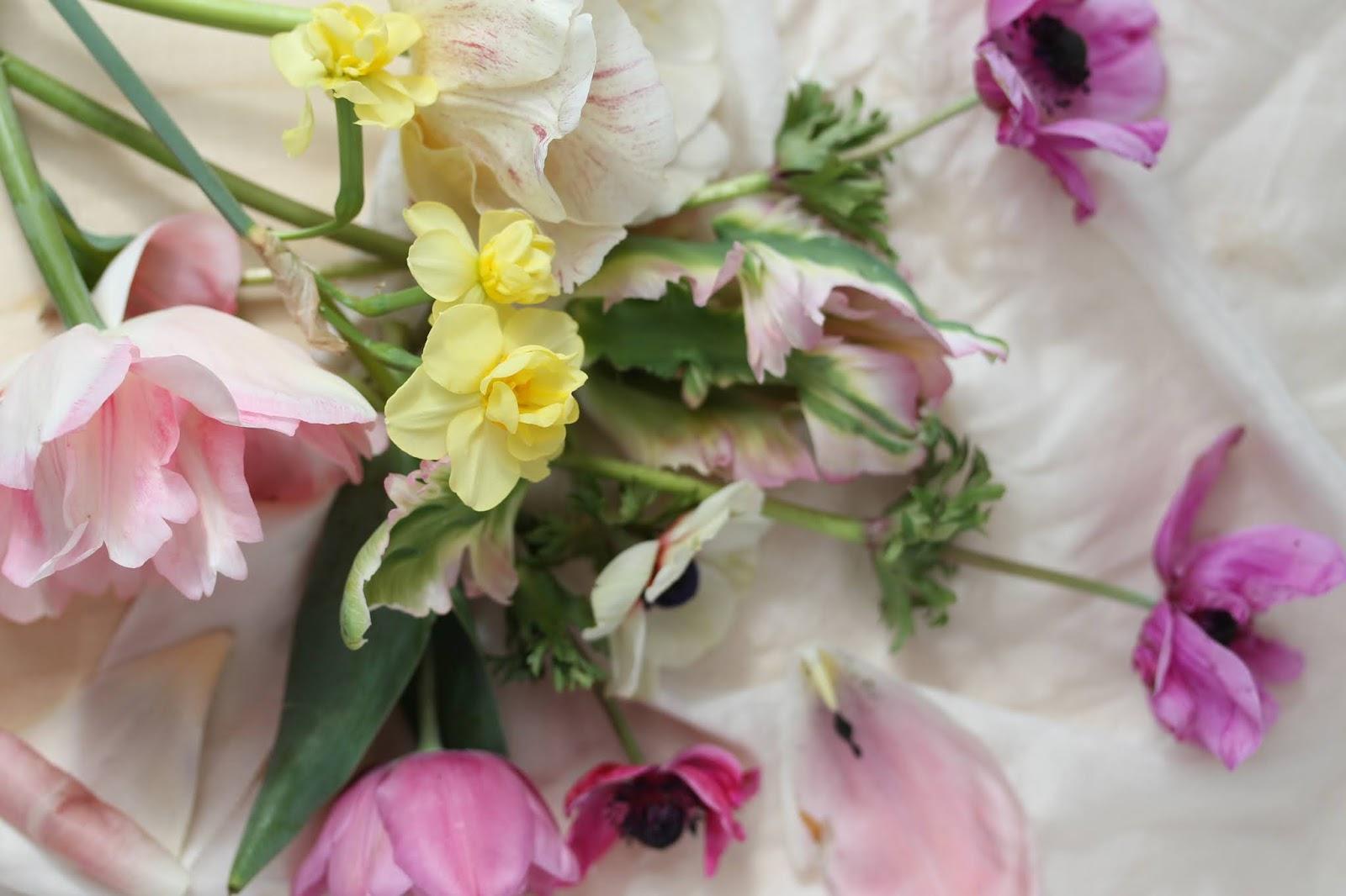 Macro_flowers_3