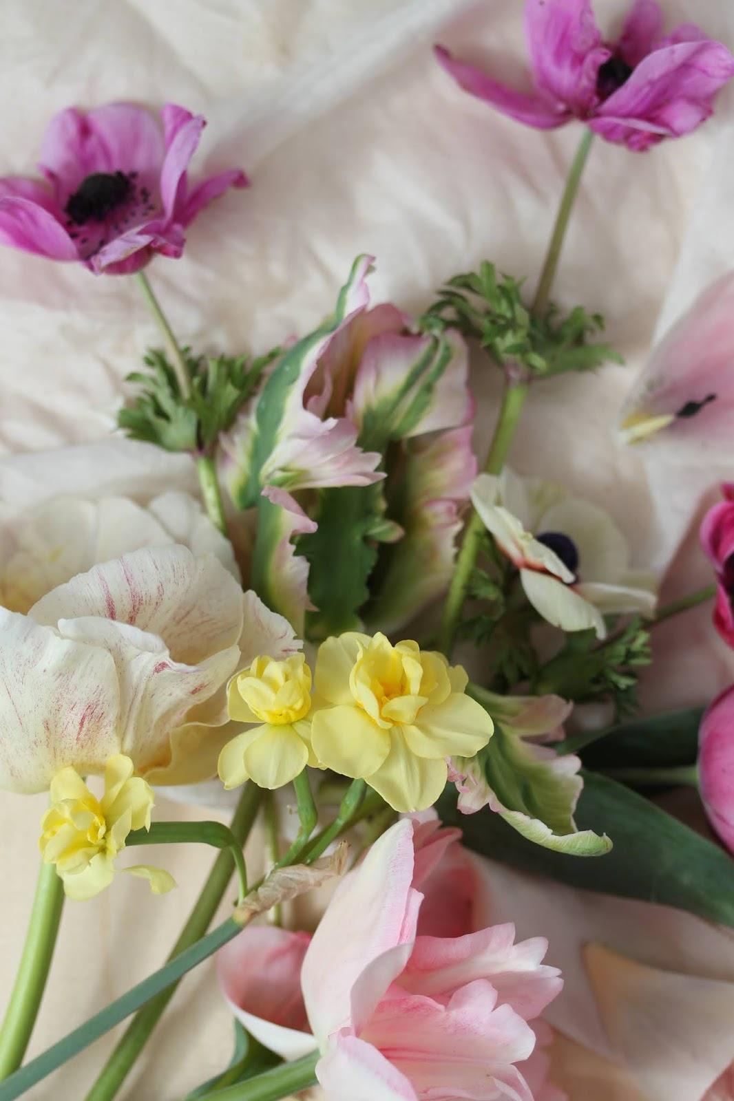 Macro_flowers_4