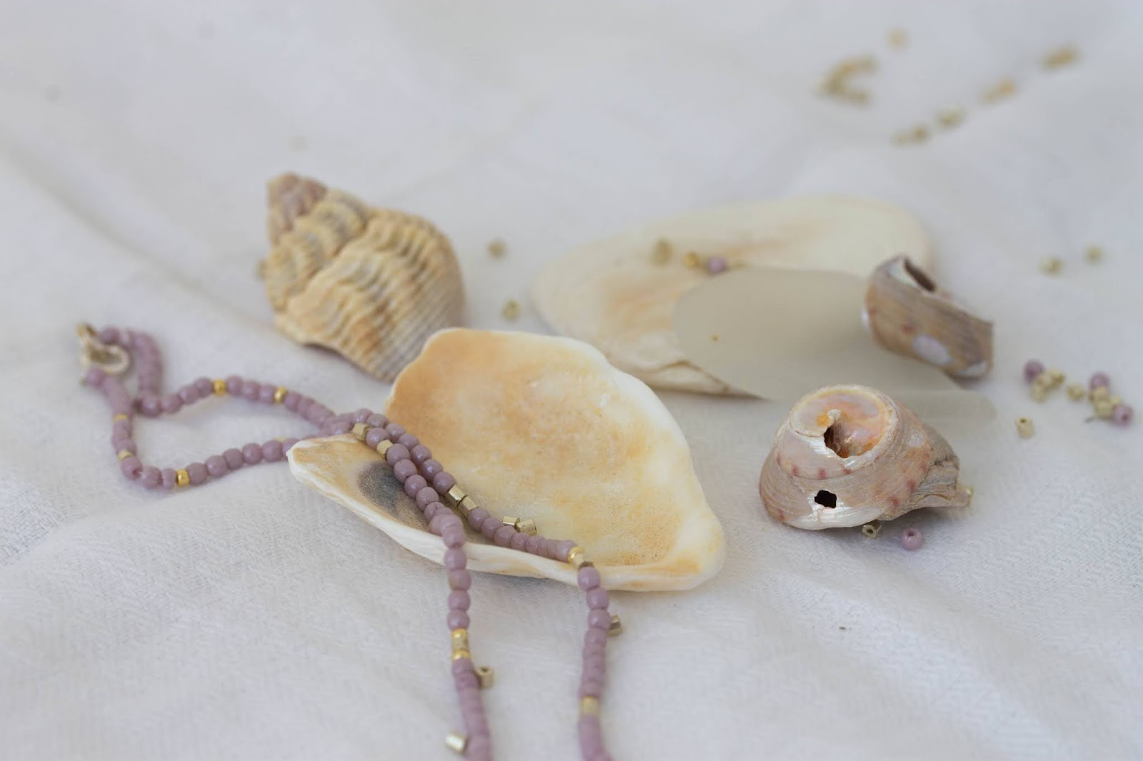 New_Shell_necklace_1