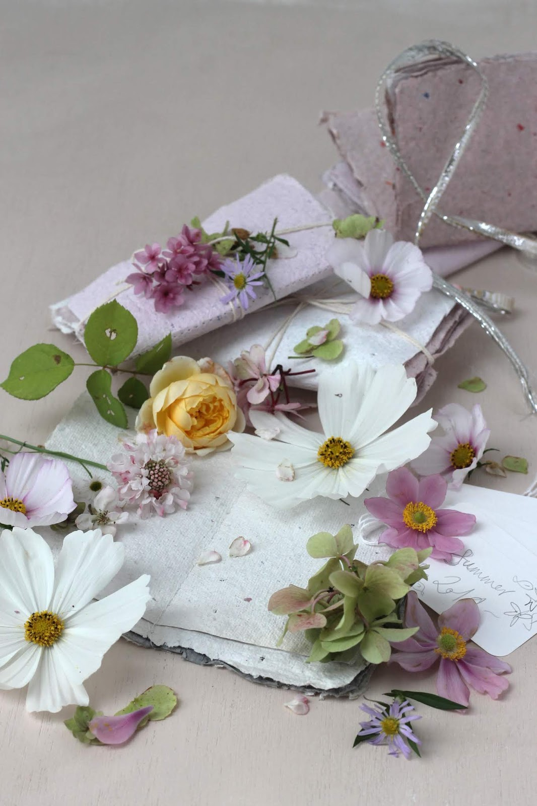 Pressed_Flowers_1