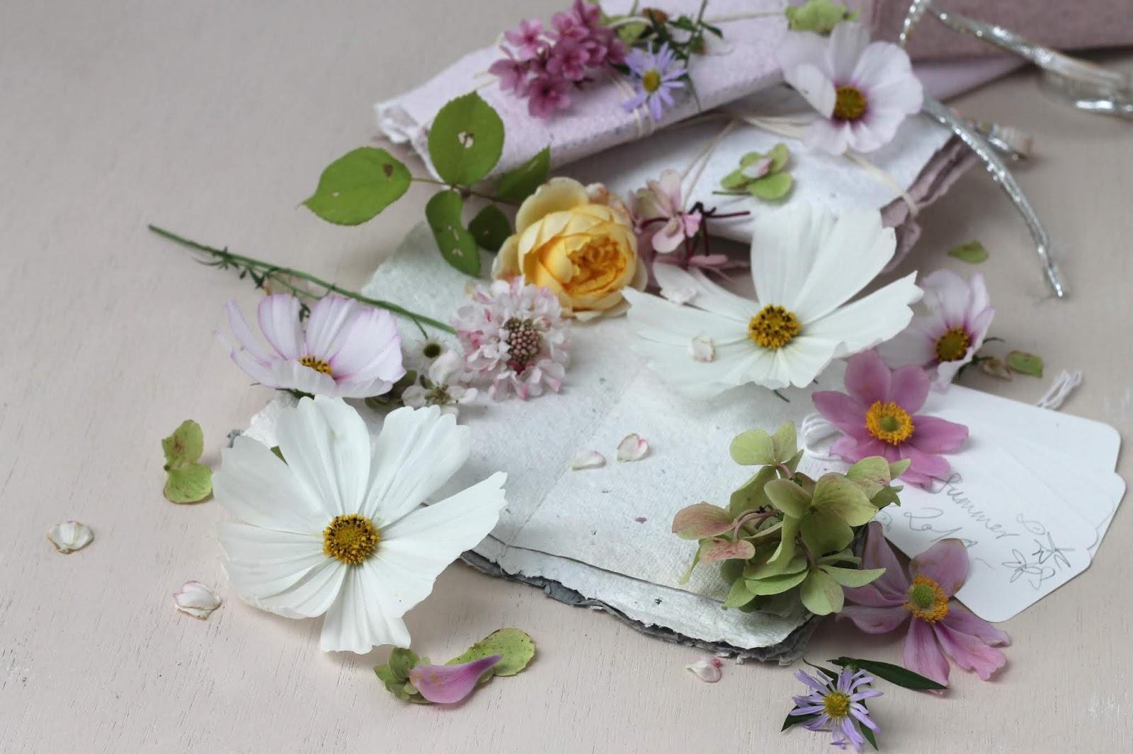 Pressed_Flowers_3