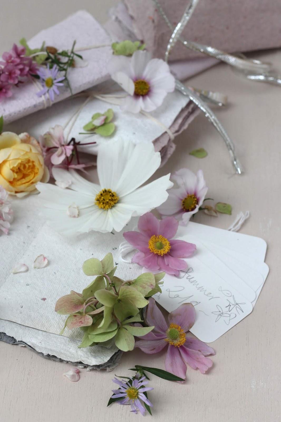 Pressed_Flowers_4