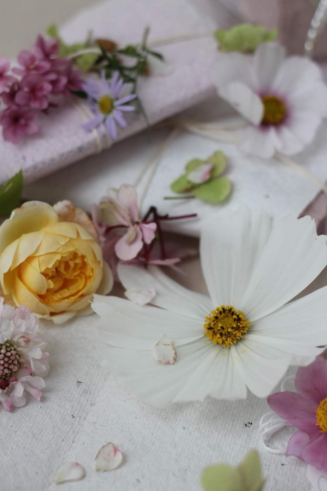 Pressed_Flowers_5