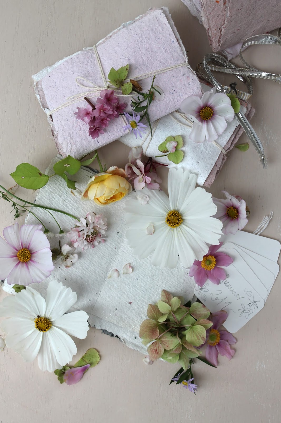 Pressed_Flowers_8