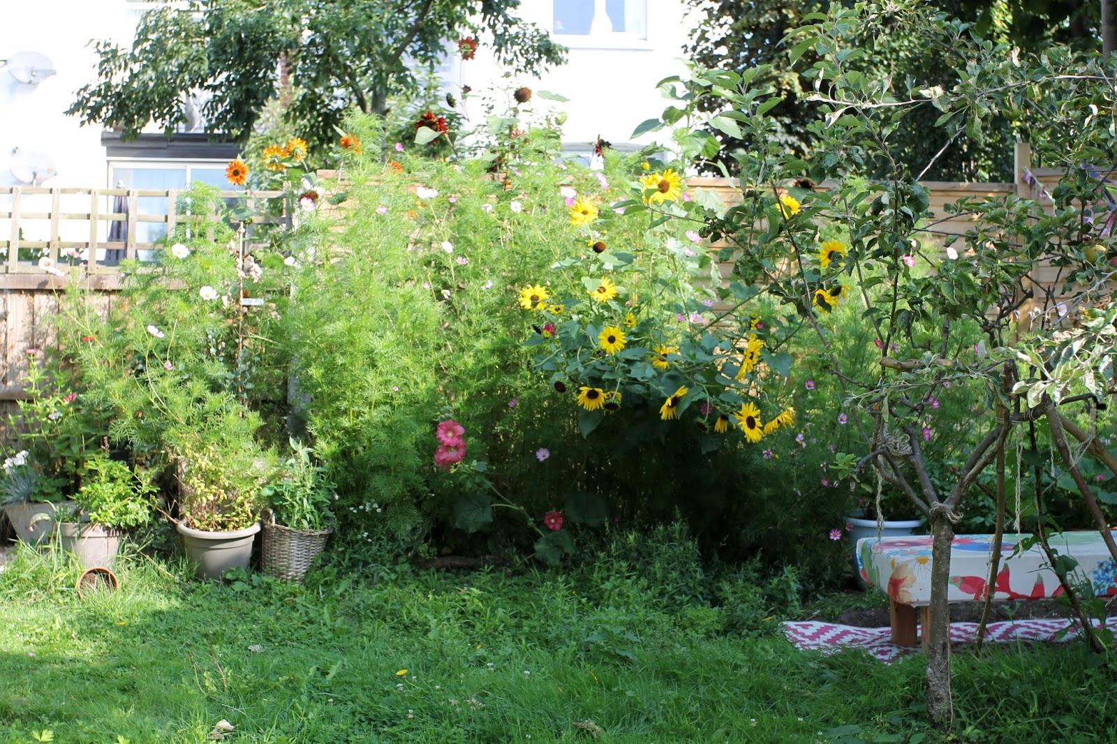 Summer_garden_11