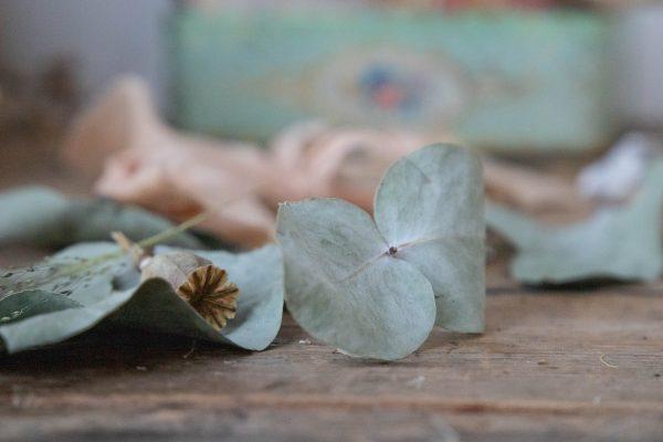 eucalyptus gift tags