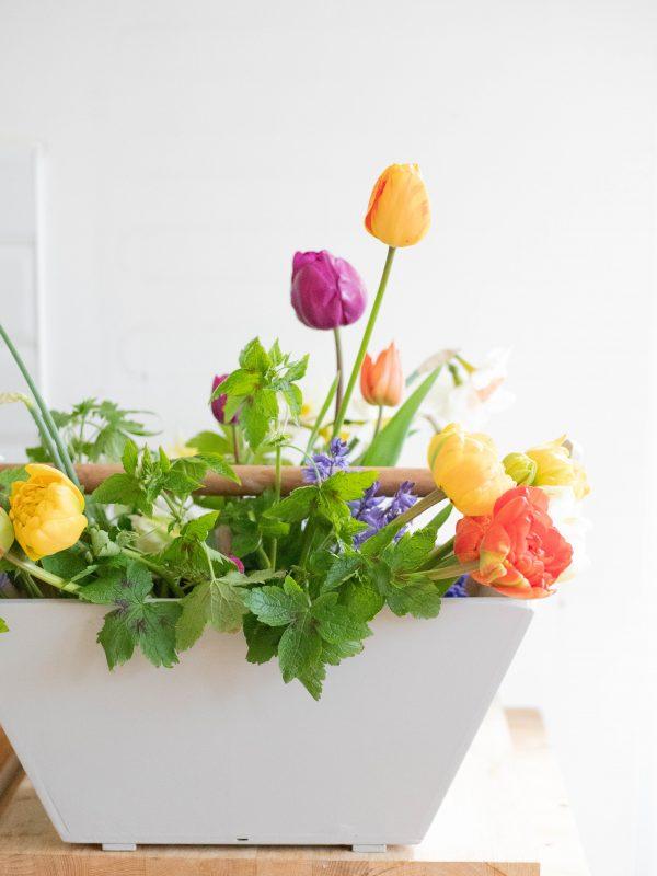Fresh_spring_flowers