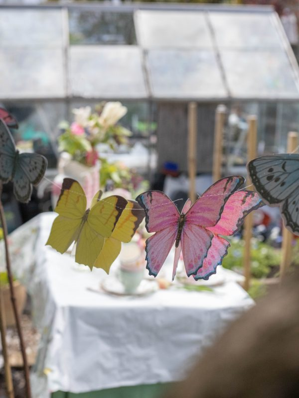 Butterfly_Bunting