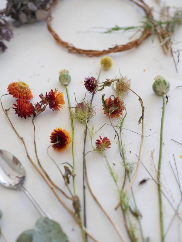 strawflowers and nigella for wreath making