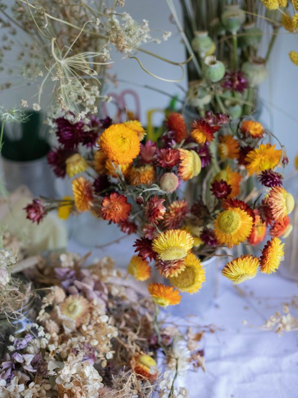 Dried flowers for summer wreaths