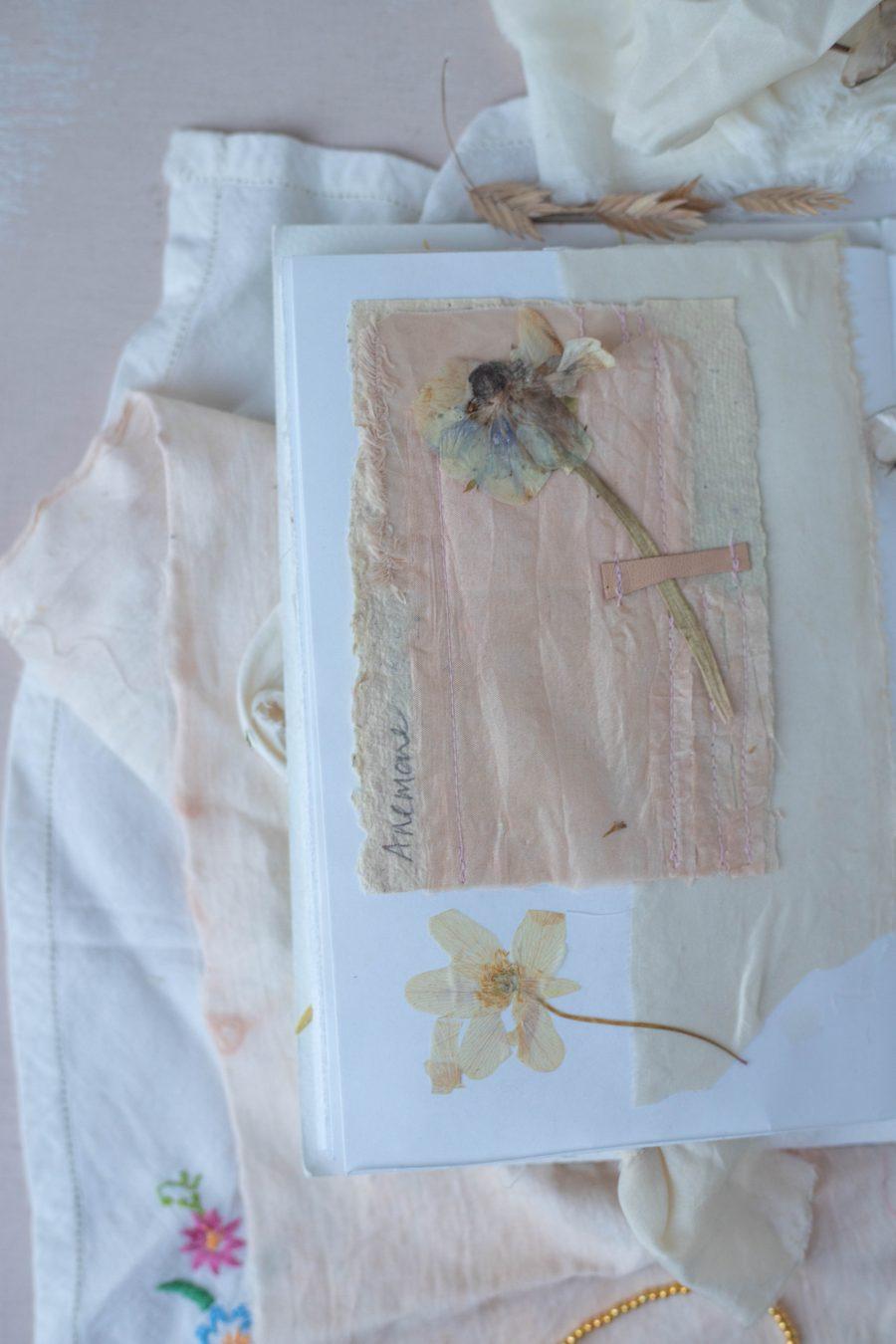 Pressed anemones
